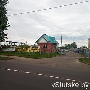 """""""Гнедой мустанг"""" г. Слуцк"""